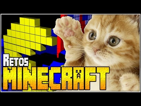 Dsy-meow | Retos Minecraft