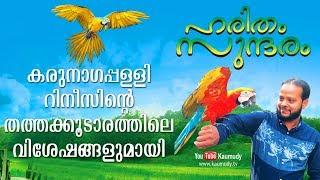 Huge profit from Parrot farming   Haritham Sundaram   Kaumudy TV