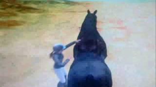 Horse Games: MyHorseClub and Apassionata