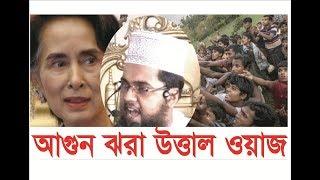 আগুন ঝরা উত্তাল ওয়াজ bangla waz 2017 delwar hossain hojaifi