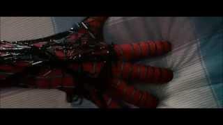 Spiderman Video (Linkin park-New Divide)
