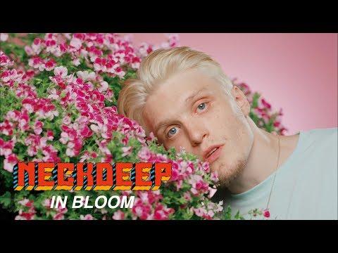 Xxx Mp4 Neck Deep In Bloom Official Music Video 3gp Sex