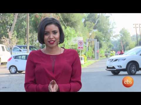 Xxx Mp4 ኢትዮ ቢዝነስ ስራ ፈጣሪዎች የጥፍር ውበት መስጫ Ethio Business Season 1 Ep 2 3gp Sex