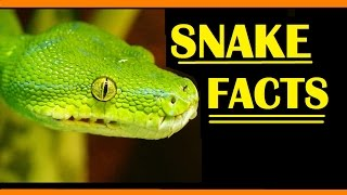 Naagin (Snakes) - 9th January 2016 ( 9/1/16 ) - Unknown Weekly Facts - नागिन
