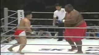 600lbs Sumo Vs 169lbs MMA Fighter