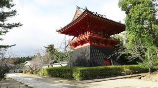 Breathtaking Japanese Temples