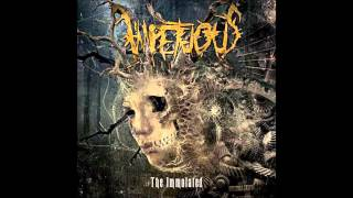 Impetuous - The Immolated (NEW SONG 2015)