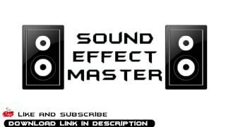 Kung Fu Shout  sound effect #1  + Download Link