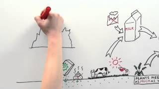 Bord&Stift - The phosphorus problem