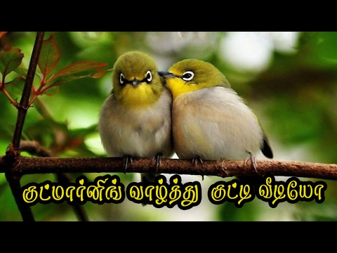 Good Morning Sms tamil Whatsapp Video #072