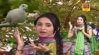 Chamunda Maa No Dj Zapato | Part 1 | હોલડું બિવડાવે | Dj Nonstop | Gujarati Dj Mix Songs 2017