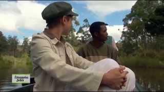 Madagascar - Echappées belles