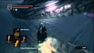 [Dark Souls] How To Beat The Hydra (Darkroot Basin)