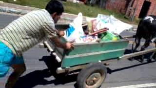 Empurrando a carroça