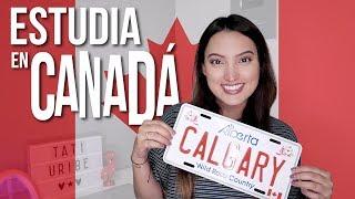 ESTUDIA INGLÉS EN CANADÁ (TODO LO QUE NECESITAS SABER: VIVIENDA, CIUDADES, NIVEL) - Tati Uribe