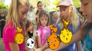 At The Zoo Animal Song | Learn Animals Songs | From Baby Genius