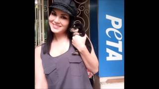 Sunny Leone is getting cozy with her cute looking pets || sunny leone instagram videos ||
