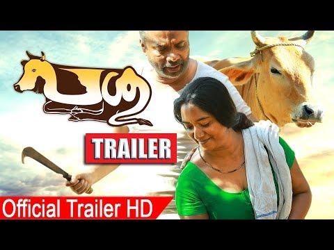 Xxx Mp4 Passu Malayalam Movie Trailer 2017 Malayalam Movie Passu Official Trailer 3gp Sex
