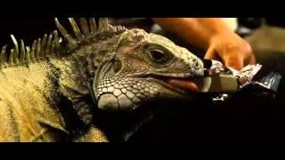 Fast and Furious 4 2009 Full Movie In English HD 1080p   Vin Diesel Paul Walkerwww MP3Fiber com