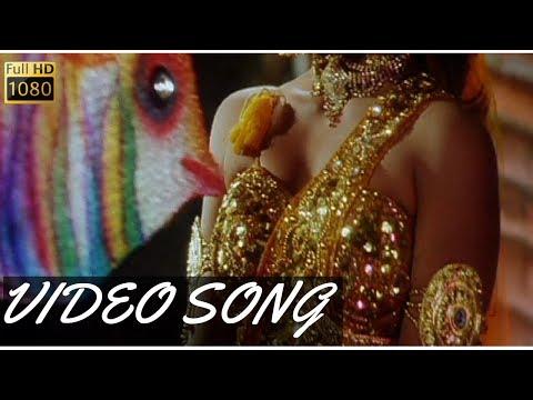 Xxx Mp4 Meena Meena Video Song Sahasa Veerudu Sagara Kanya Phoenix Telugu 3gp Sex