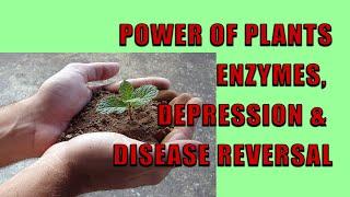 Power Of Plants; Enzymes, Depression, & Disease Reversal