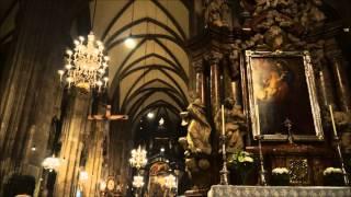 Cathedral  St. Stephen. Vienna.
