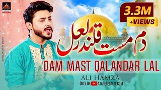 Qasida - Dam Must Qalandar Lal Lal - Ali Hamza - 2016