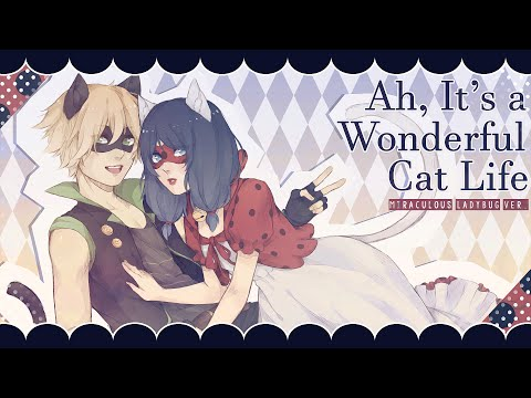 Xxx Mp4 Ah It S A Wonderful Cat Life ❘ ❮Miraculous Ladybug❯ MV 3gp Sex