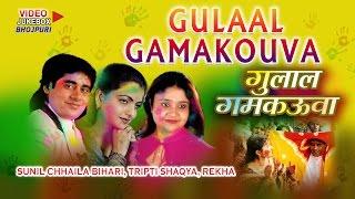 GULAAL GAMAKOUVA - VIDEO Songs Jukebox [ Holi Special 2016 ] [ SUNIL CHHAILA BIHARI ]