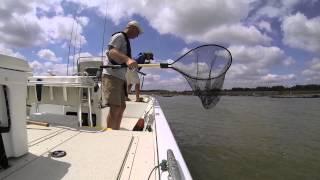 Ohio River Multi Species Fishing