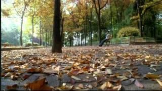 Bheegi Bheegi [Full Song] Gangster- A Love Story