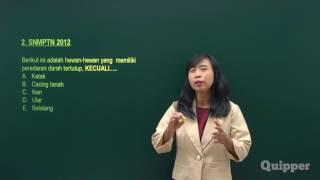 Quipper Video - Struktur Hewan - Persiapan SBMPTN Biologi 2017