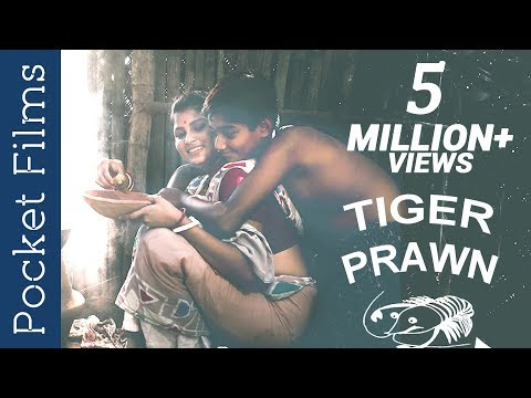 Xxx Mp4 A Mother And Son Story Golda Chingri Tiger Prawn 3gp Sex