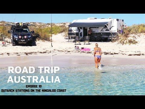 BEACH CAMPS ON THE NINGALOO COAST ARE INSANE ROADTRIP AUSTRALIA EP.10