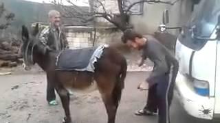 Kshu kallet Gomari (www.tetovasot.com)