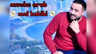Ramin Ramizoglu - Mal Habibi