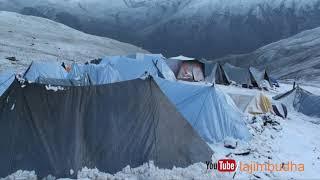 Himalayan life into the snow || yarsagumba ||