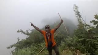 Shakor para to Tajingdong, The