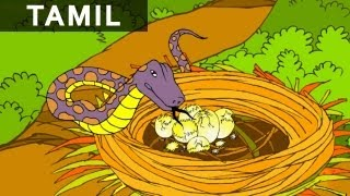 Crow And The Snake - Panchatantra In Tamil  - Cartoon / Animated Stories For Kids