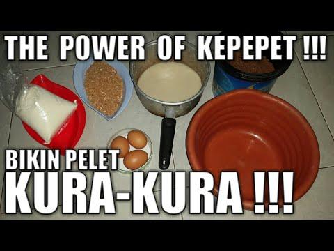 Xxx Mp4 Bikin Pelet Kura Kura THE POWER OF KEPEPET 3gp Sex