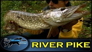 River Pike fishing frenzy - Ep.5 - Series 3 - Totally Awesome Fishing