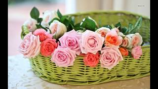 www.flower-images.com