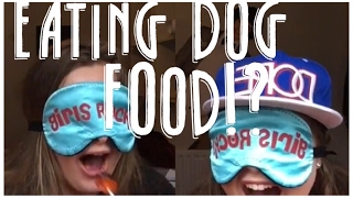 EATING DOG FOOD?| LICK THAT LOLLY CHALLENGE!