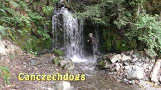 Attacked By Dog In  Waterfall!