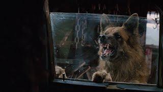 Cães Assassinos  (Filme completo e dublado ) pt br