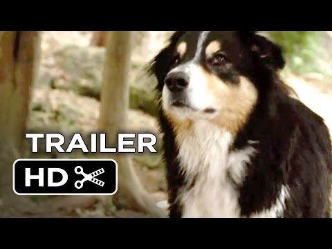 Xxx Mp4 Bark Ranger Official Trailer 1 2015 John Lovitz Movie HD 3gp Sex