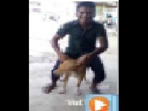 Xxx Mp4 Kukurer Sathe Valobasa Dog With Man Love Fantastic Relation 3gp Sex