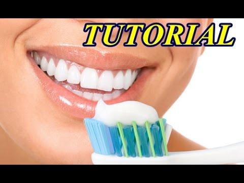 Como Escovar os Dentes Corretamente Tutorial