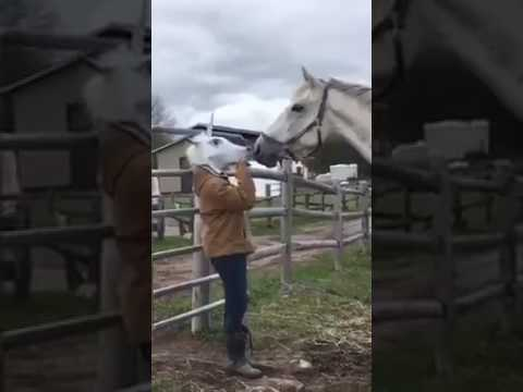 Xxx Mp4 Horse Fuck Girl 3gp Sex