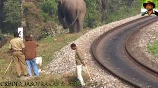 Elephant & Railway Line Exclusive VDO Part II By Jasoprakas.